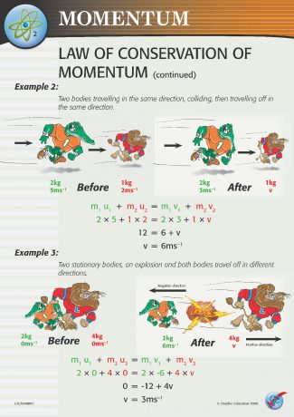 Conservation of Moment Continued