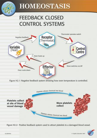 Feedback Closed Control Systems